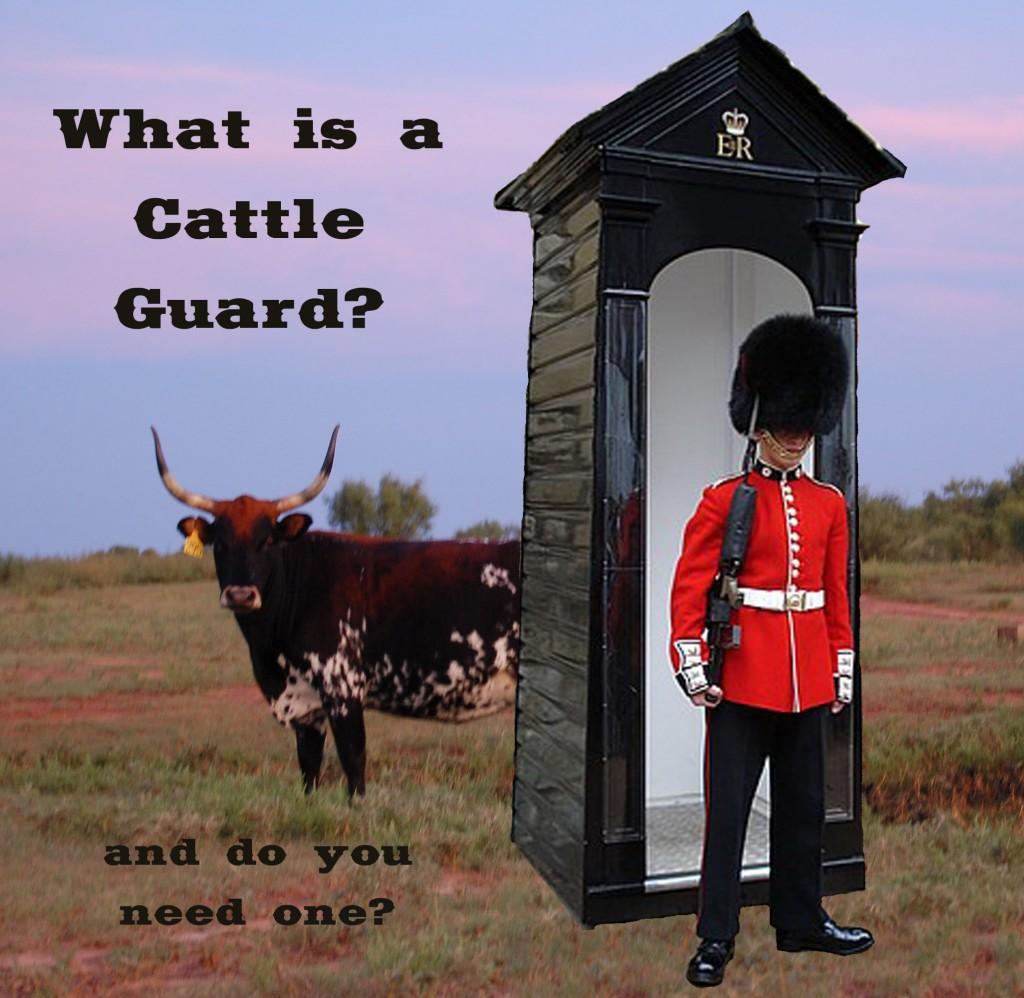 cattleguard3